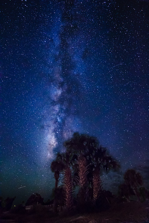 Cedar Key Milky Way (4 of 4)